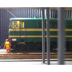 M-81513D Locomotora diésel...